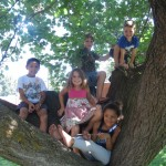 5 Resons to Encourage Your Kid to Climb a Tree